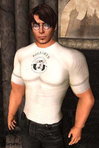 DLaW - Pigfarts T-Shirt