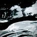 Ferrofluid-Like