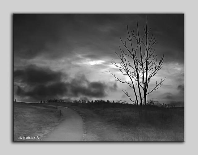 The Last Dawn - Grayscale