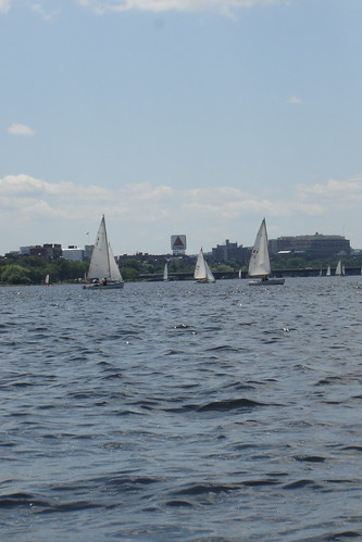 great day for sailing