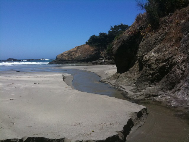Jug Handle State Beach