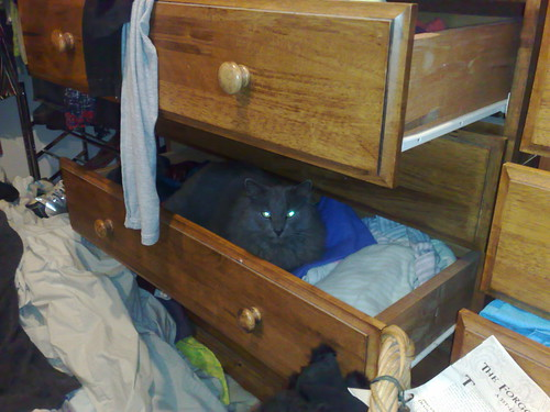 What do you mean you want to tidy the drawers?