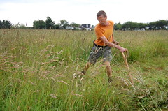 mowing in the tai-chi style