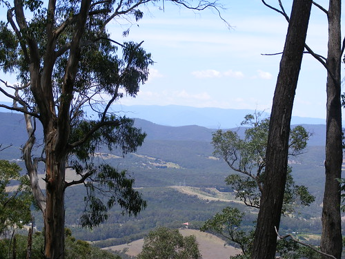Picture from Kinglake, Victoria