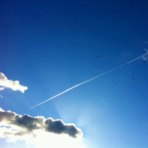 空の彼方へ…。 #sky #iphonography #instagram