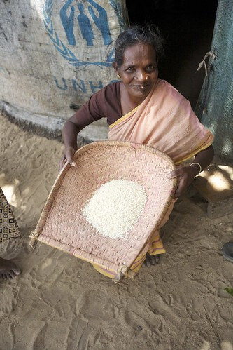 An older lady cleaning rice outside of her home constructed from UNHCR tarpoulins