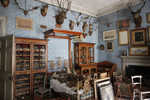 Calke Abby trophy room