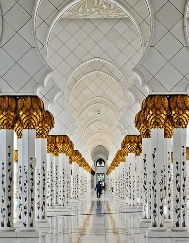 The Pillars of Sheik Zayed Mosque Sylvianism Photo Album