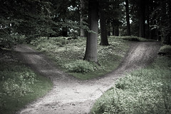 crossroads on doctorfoodtruth