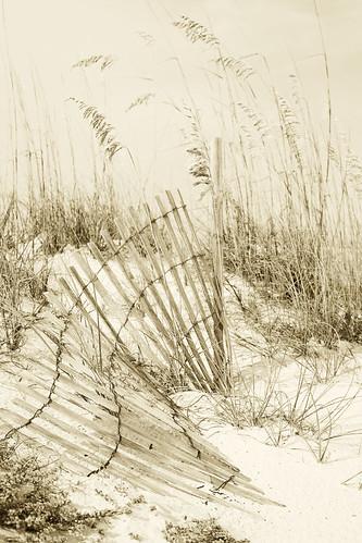 beach6f