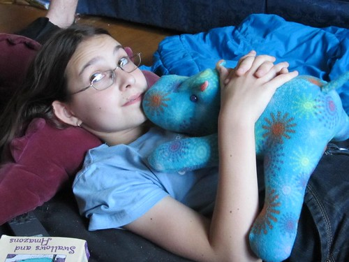alice and the new hippo