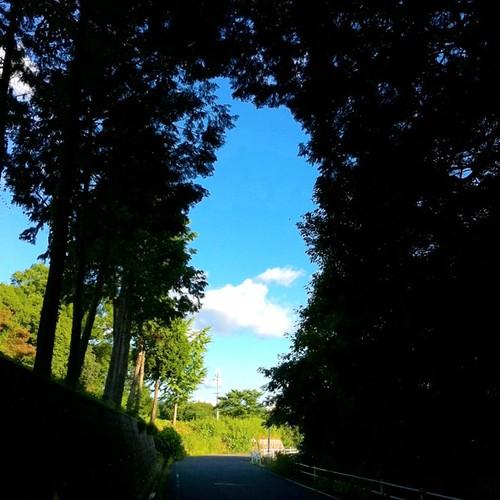 そこに青空がある。#sky #iphonography #instagram