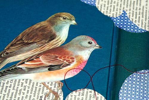 Book birds-4