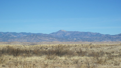 Picture from the Gila Mountains
