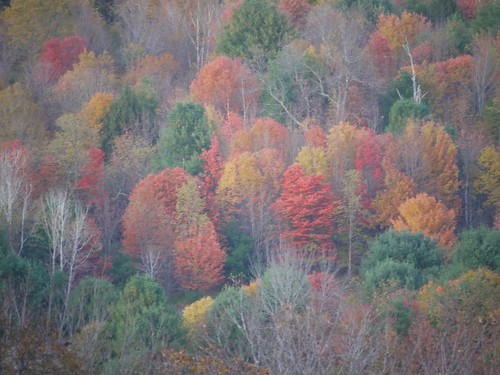 Hill colors