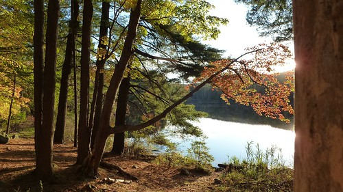 Leaves changing at Lake Nowahunta