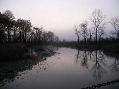 Bike Commute 124: Fog on the River by Rootchopper