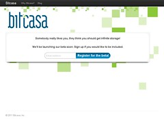 bitcasa marketing campaign