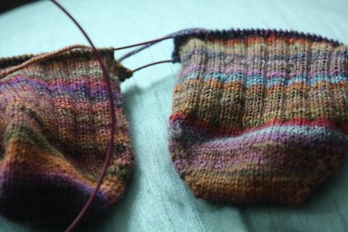 abigail socks