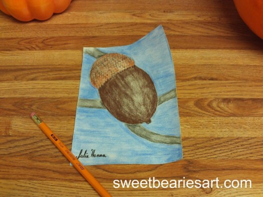 Drawing An Acorn