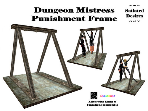 Dungeon Mistress Punishment Frame