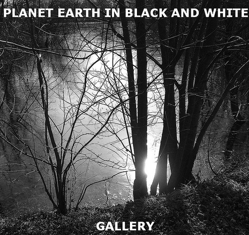 PLANET EARTH IN BLACK AND WHITE gallery has new updates.