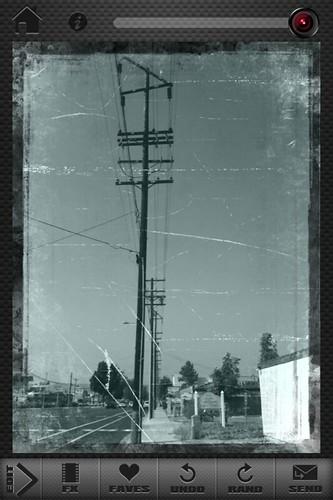 Camera Roll-347