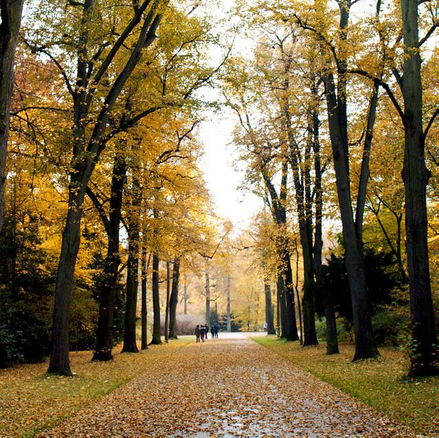 Herbst im Großen Garten