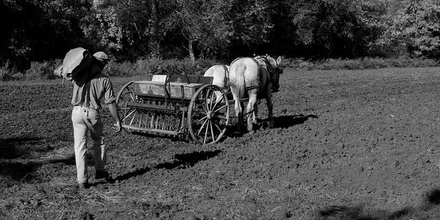 Filling the Seeder