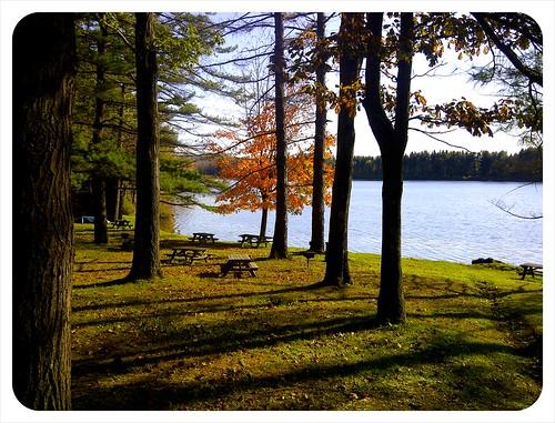 Rudd Pond State Park