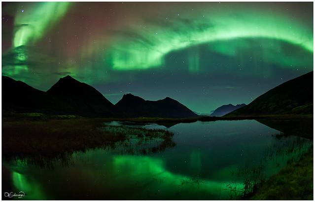 Luminous Pond