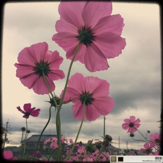 2011-11-05 at 01.30.03_edited-1