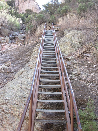 Picture from the Gila Mountains Catwalk