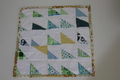 Front of my new DS quilt