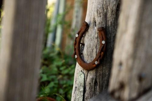 horseshoe in gruene