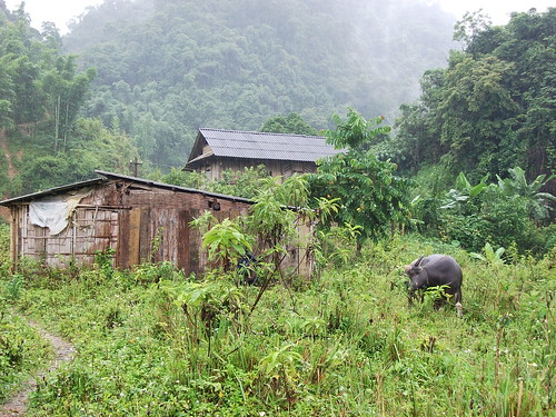 Farm in Son La by Carlos F. Domingo