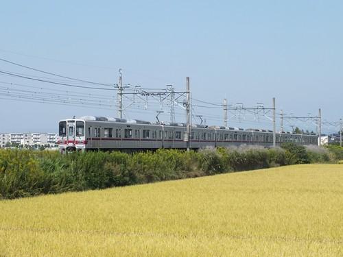 DSCF5519