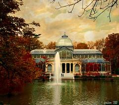 Crystal palace │Palacio de Cristal (I)