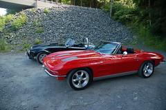 Cobra and Corvette
