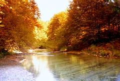 Un río en el interior de la selva de Irati