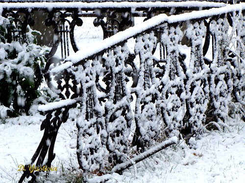 The Snowed Gates