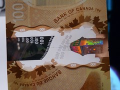 2011 Canada New Polymer $100 - back - pix 22