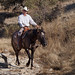 Paso Robles Horse Ranch 12