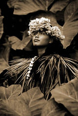 Cultural Dancer