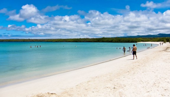 Beach in Tortuga Bay