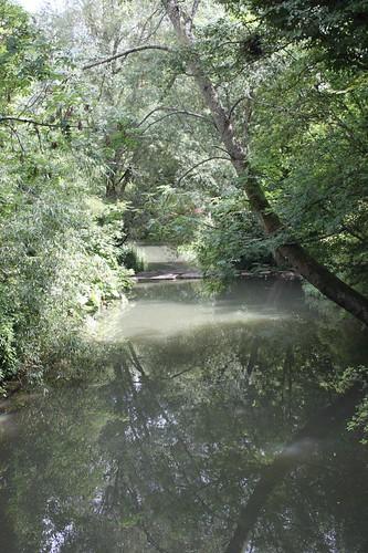 20110805_IMG_1610_river-gardens