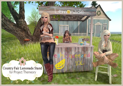 Country Fair Lemonade Stand for Project Themeory