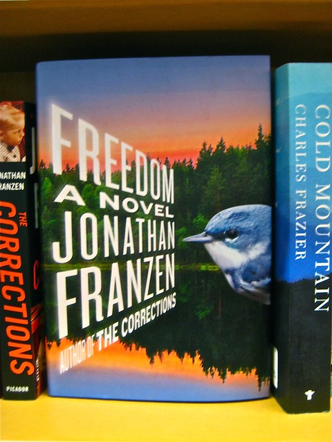 Jonathan Franzen / Freedom / Charlotte Strick. Copertina (part.)