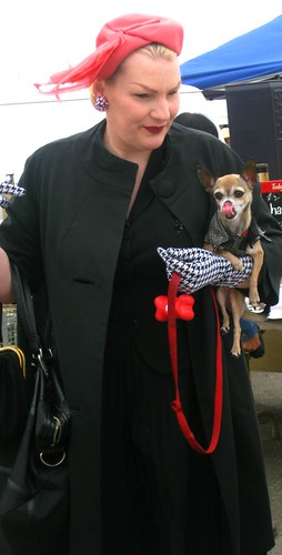 Accessorizing with Chihuahuas by dyannaanfang