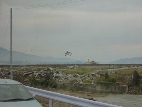 一本松, 陸前高田市高田町でボランティア, 「手を貸すぜ 東北」レーベン号 Volunteer at Rikuzentakata, Iwate pref. Deeply Affected Area by the Tsunami of Japan Earthquake